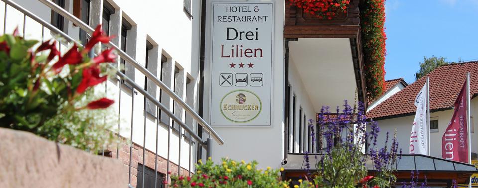 Hotel Drei Lilien Hotel Und Restaurant Drei Lilien Waldbrunn Im