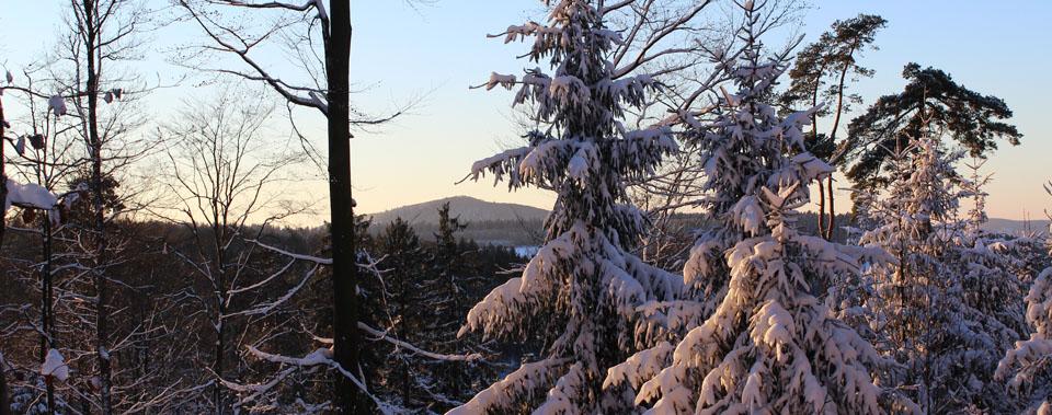 Genießen Sie herrliche Winterlandschaften.